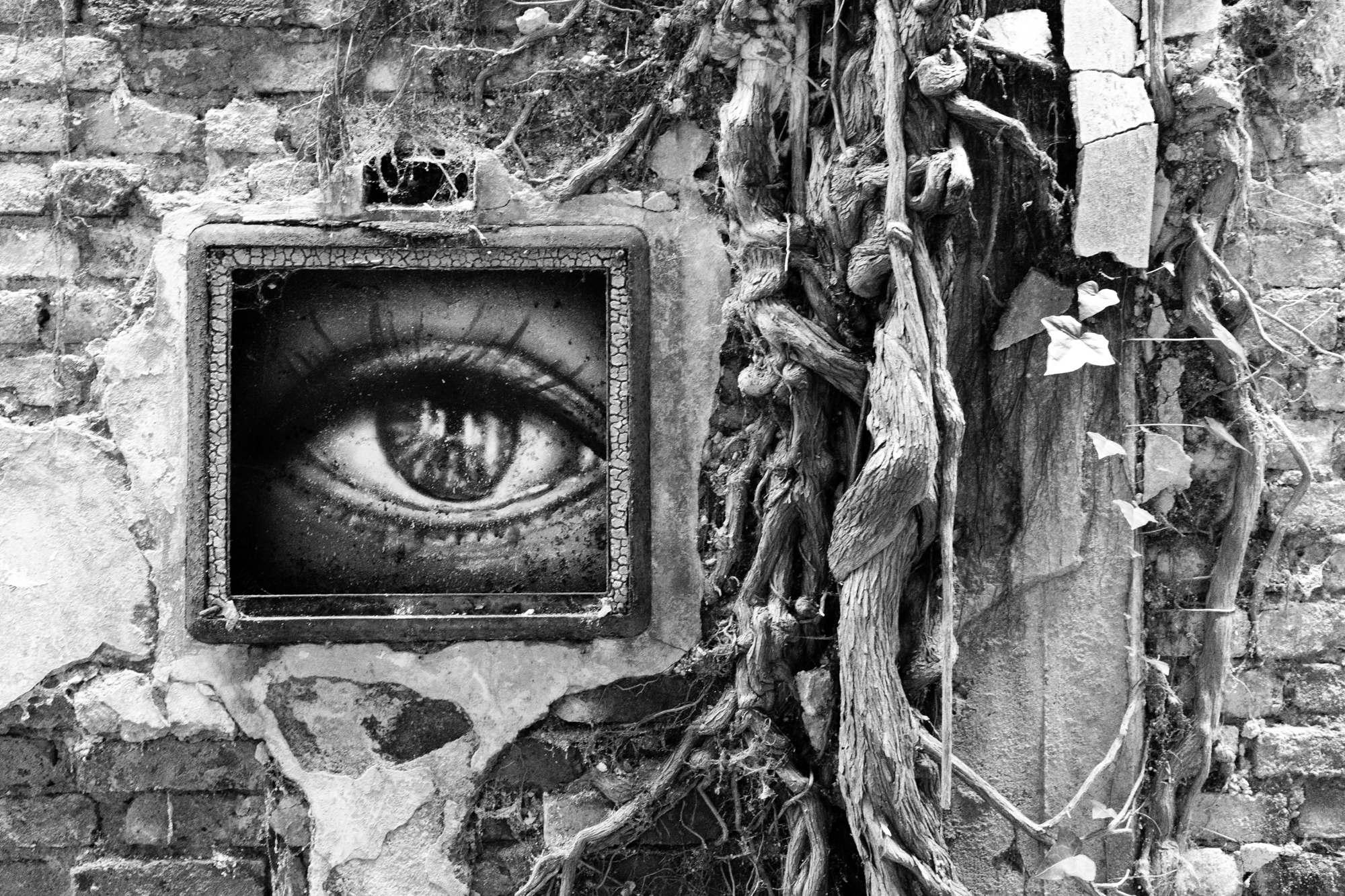 Graffiti of an eye near a tree
